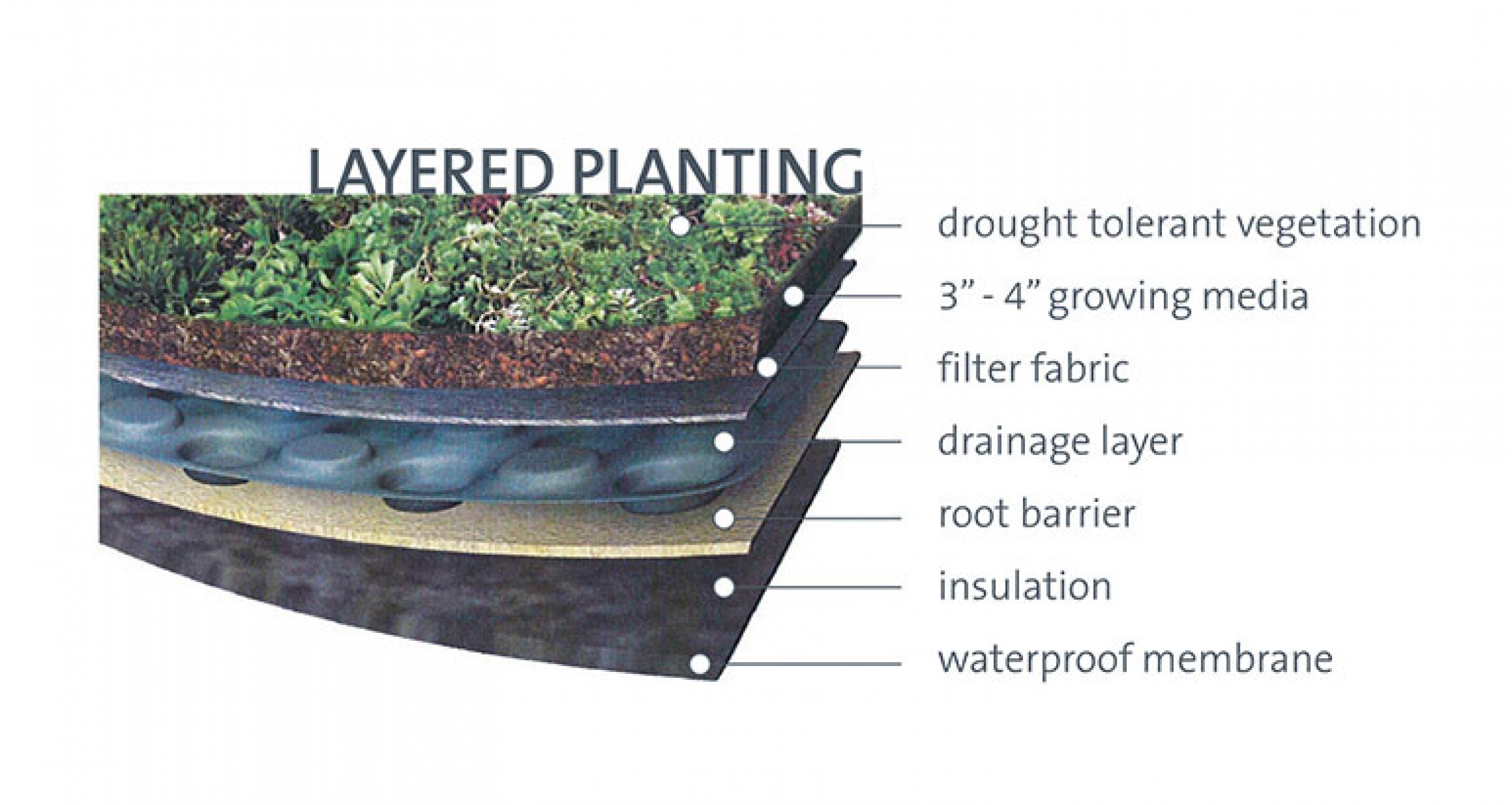 Diagram of green roof layers