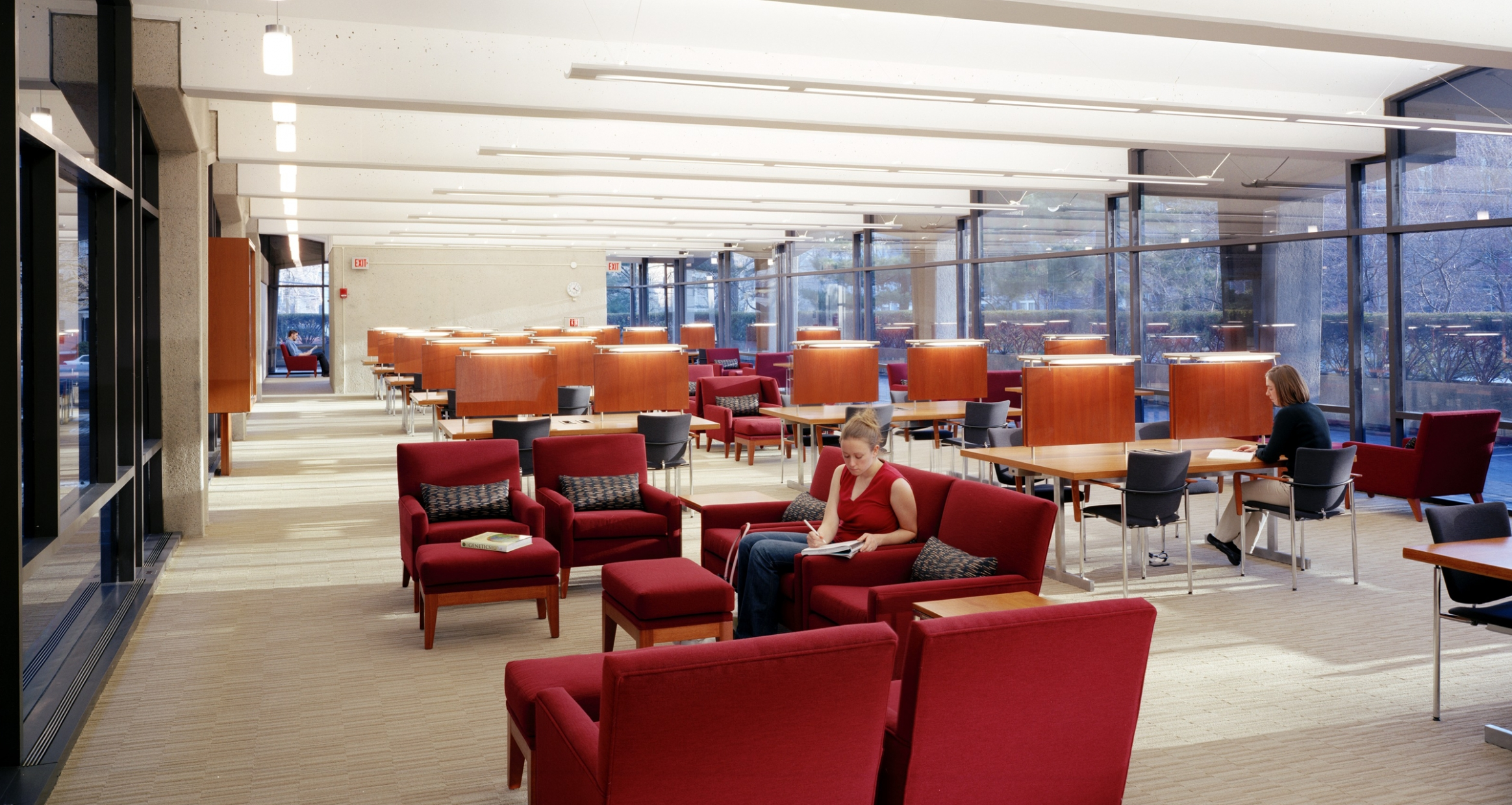 Hilles Library Harvard University