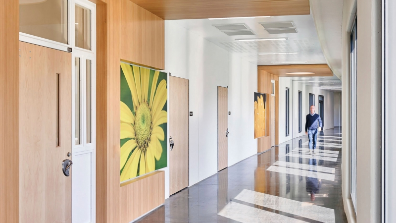 hallway filled with light with painting of yellow flower on the wall
